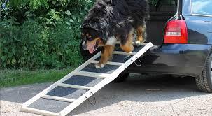 Wollen sie ihre hunderampe selber bauen, sollten sie die belastbarkeit nicht überschätzen. Hunderampe Furs Auto Test Und Ratgeber
