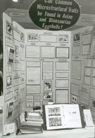 Mister Science Fair Com Display Boards