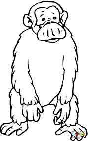 Small Picture Sad Chimpanzee coloring page Free Printable Coloring Pages