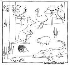 Australian Animals Coloring Pages Coloring Pages Pictures