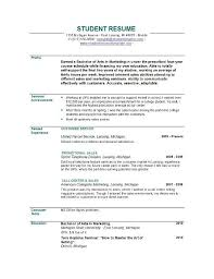 resume profile statement example profile resume sample