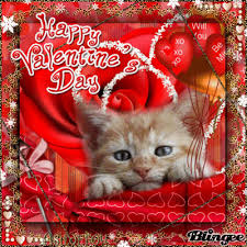 valentine cat images. Contemporary Cat Animated GIF Cat Valentine Share Or Download Throughout Valentine Cat Images 0
