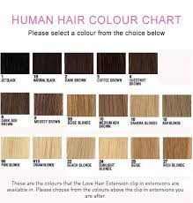 Colour Chart For Clip In Extensions Love Afro Cosmetics