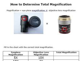Microscope Magnification Chart How To Determine The Magnification Of A Microscope