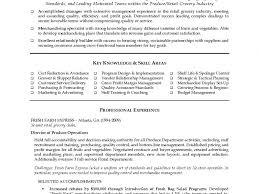Visual Merchandising Resume Merchandiser Resume Sample