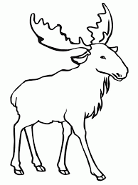 Small Picture Elk Coloring Pages For Pinterest Coloring Home