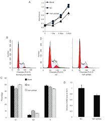 Knockdown Factor Chart Yap Knockdown Inhibits Proliferation Of Jurkat Cells A