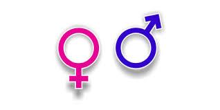 Kadın ve Erkeklerin Mobil Uygulama Seçimleri - Sosyal Medya