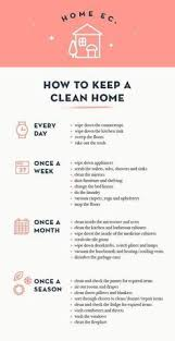 Pin by Aleta Bryant on Modern Resume in 2020   Clean house, House cleaning  tips, Cleaning hacks