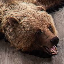 5 Foot 11 inch (180 cm) Grizzly Bear Rug #7003125