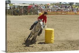 cowgirl barrel racing with horse in