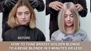 Guy Tang Toners Colour Chart How To Tone Brassy Golden Blonde To A Beige Blonde In 5 Minutes Or Less Kenra Color