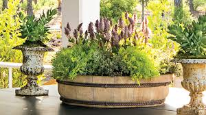 How To Plant a Simple Moss Container Garden | Southern Living ...