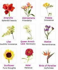 flowers list