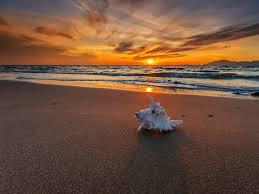 Beach Sunset Wallpaper Hd - Hd Desktop ...