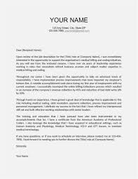 Business Presentation Letter Template Examples Letter