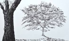 realistic apple tree drawing. Unique Apple Image Result For Realistic Apple Tree Drawing On Realistic Apple Tree Drawing F