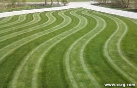 Mowing Patterns Fascinating Show Your Stripes Scag Power Equipment Customer photos of lawn