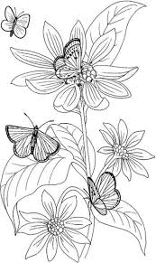 Floral Coloring Pages With Butterflies Coloringstar