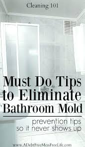 how to remove mold from bathroom walls how to remove mold from bathroom walls must do