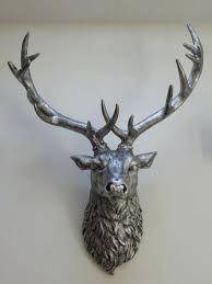 real stag head wall mount stag head wall decoration crazyzoot