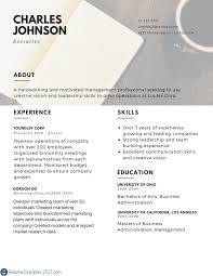 Executive Resume Executive Resume Examples to Follow Resume Examples 100 43