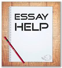 hamlet essay questions hsc some paragraphs in english sample  hamlet essay questions hsc some paragraphs in english sample 5 paragraph essay story