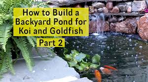 Backyard Pond How To Build A Backyard Pond For Koi And Goldfish Part 2 Pond