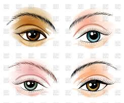 beautiful woman s eyes with makeup vector image vector artwork of people olena1983 65857 to zoom