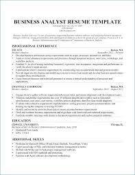 Business Analyst Resume Summary Elegant 17 Beautiful Financial