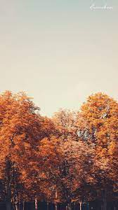 Autumn Wallpaper ♥ Desktop ...