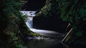 1080p Nature Full Hd Wallpaper ...