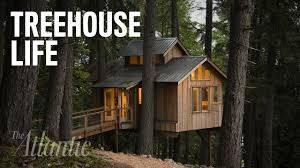 Treehouse Pictures Would You Live In A Treehouse Youtube