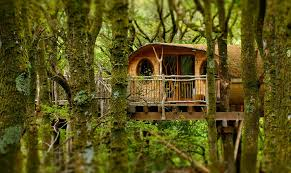 Treehouse Holidays In Wales
