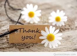 Thank You Quotes Mesmerizing Thank You Quote HD