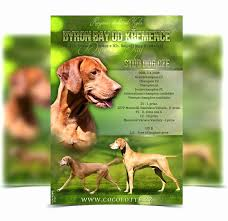 how to make lost dog flyers lost dog sign template best of missing poster generator how to make