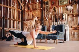 goat yoga is a thing image via ny goat yoga