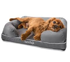 PupLounge Memory Foam Orthopedic Bed