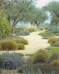 Small Picture Top 25 best California native garden ideas on Pinterest