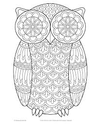 owl coloring book 0