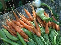"""Résultat de recherche d'images pour """"fruits et légumes, primeurs"""""""