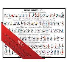 Omni Yoga Swing Pose Poster
