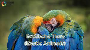 สัตว์แปลกและหายาก (Exotic Animals) [ภาษาเยอรมัน] – UBON Academy