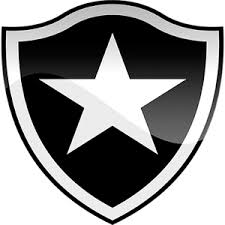 Image result for Botafogo vs Ava