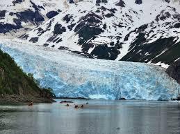 Northern Lights Coupon Book Kenai Fjords Insiders Guide To Kenai Fjords National Park