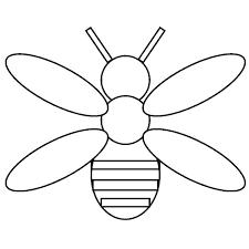 firefly coloring page firefly coloring page firefly coloring page bug jar coloring page insect to firefly coloring page