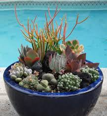 Succulent Dish Garden Ideas « Margarite GardensSucculent Container Garden Plans