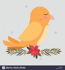 Yellow Bird Design Cute Yellow Bird In Branch With Flower Vector Illustration