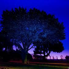 Laser Christmas Lights | Illuminator Laser Lights | Sparkle Magic