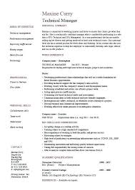 One Employer Resume Sample Technical Manager Resume Example Sample